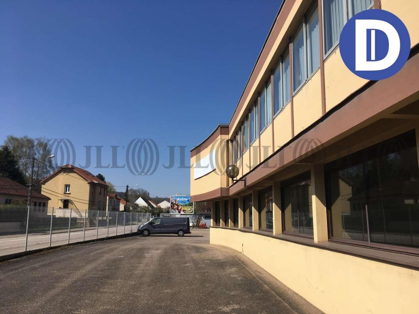 Activités/entrepôt Chatel st germain, 57160