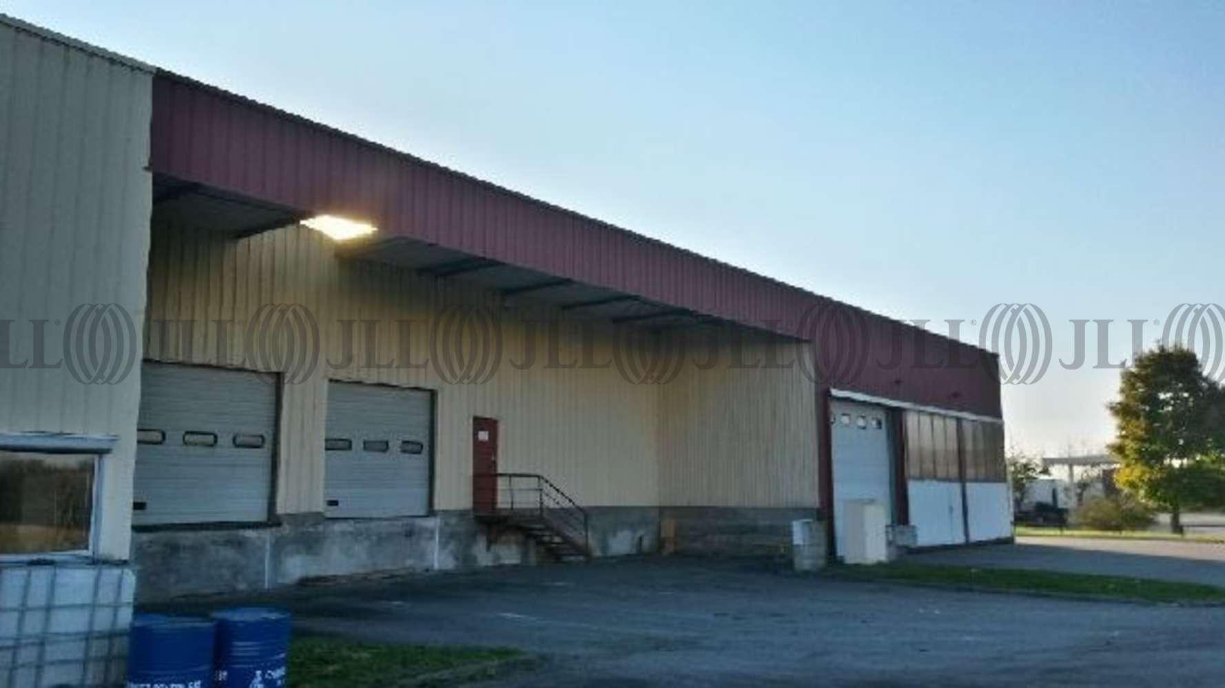 Activités/entrepôt Corbas, 69960 - ENTREPÔT À LOUER - CORBAS (69) - 10877995