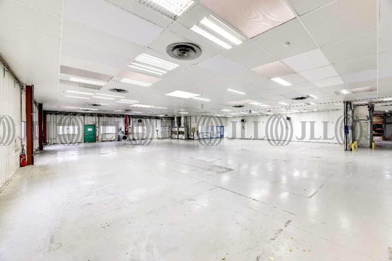 Activités/entrepôt Les ulis, 91940 - 3 AVENUE D'AMAZONIE - 10881616