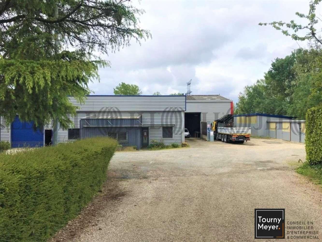 Activités/entrepôt Gargas, 31620 - 2313 ROUTE DE MOUISSAGUES - 10884314