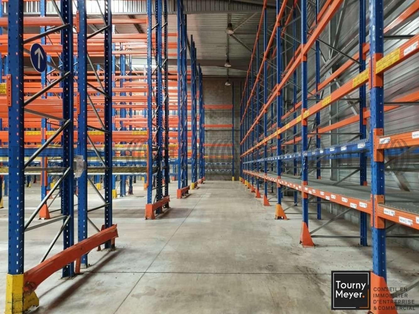 Activités/entrepôt St alban, 31140 - 2 RUE DU TERROIR - 10884662