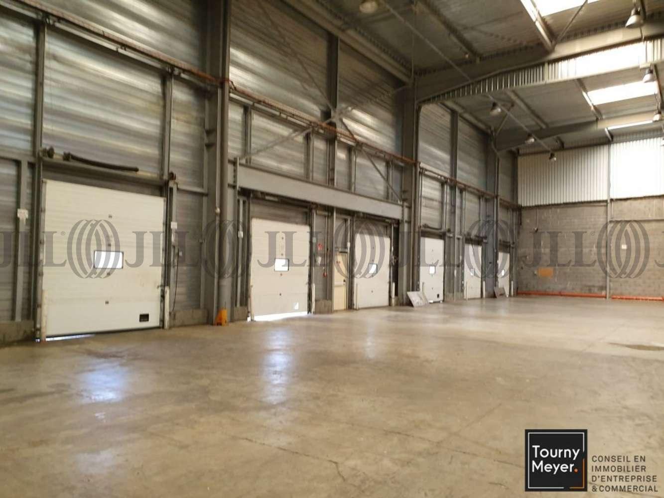 Activités/entrepôt St alban, 31140 - 2 RUE DU TERROIR - 10884666