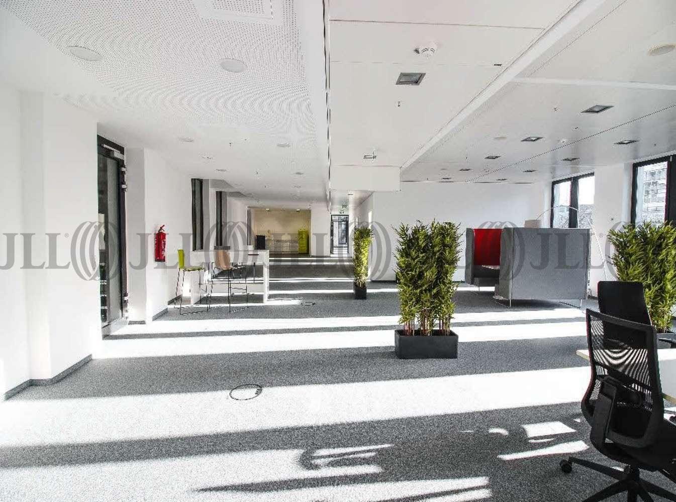 Büros Frankfurt am main, 60323 - Büro - Frankfurt am Main, Westend-Süd - F0083 - 10901229