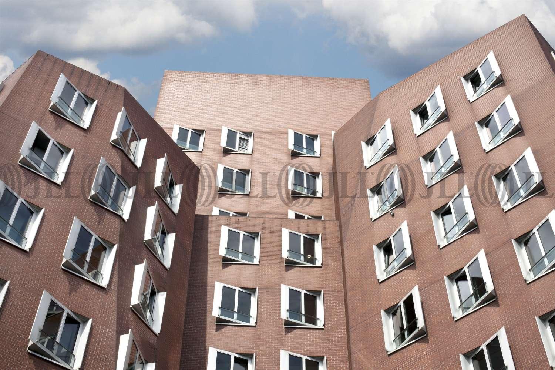 Büros Düsseldorf, 40221 - Büro - Düsseldorf, Hafen - D0177 - 10905416