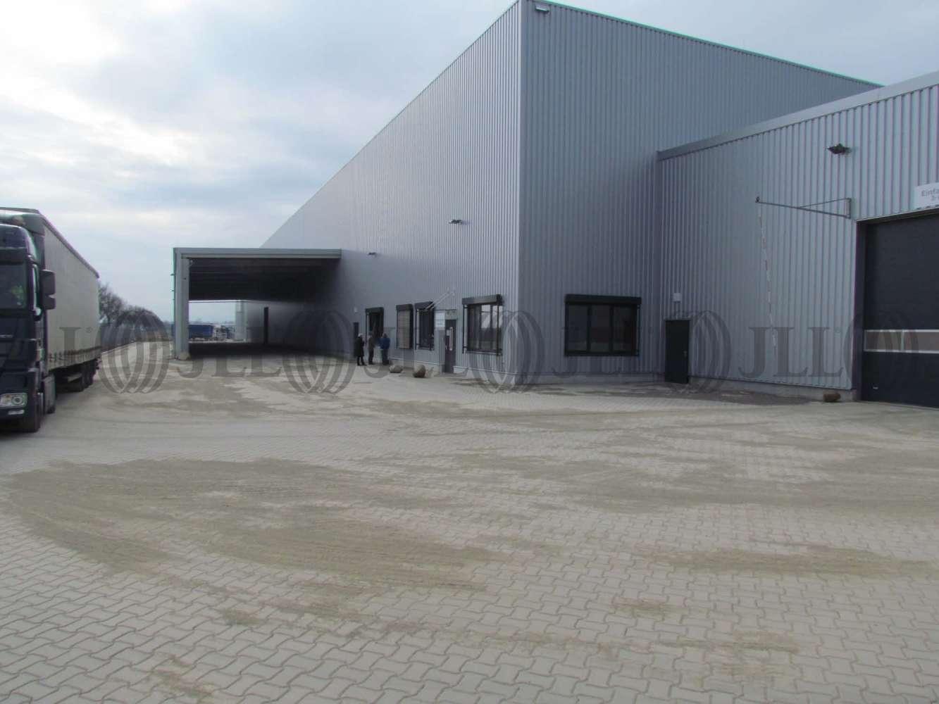 Hallen Wunstorf, 31515 - Halle - Wunstorf, Luthe - H1537 - 10906210