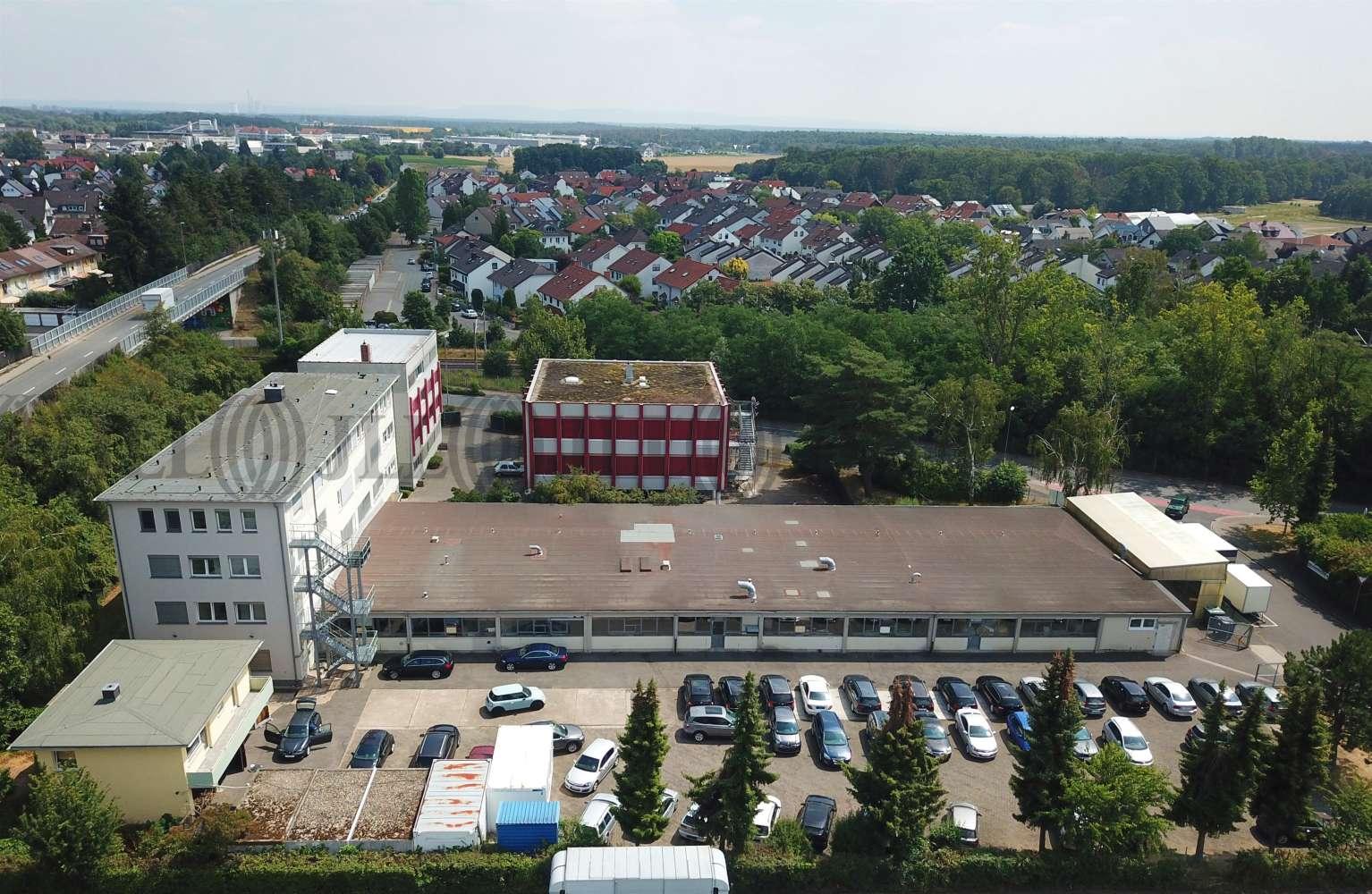 Hallen Heusenstamm, 63150 - Halle - Heusenstamm - F2538 - 10916266