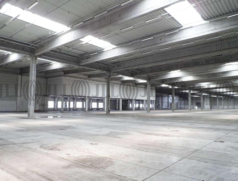 Hallen Viernheim, 68519