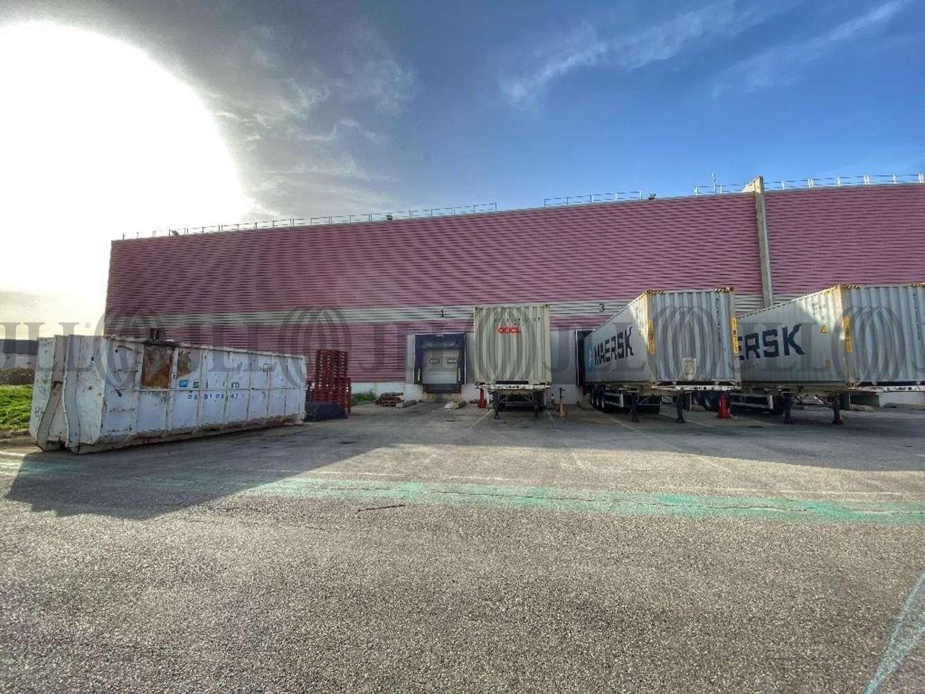 Plateformes logistiques Port st louis du rhone, 13230 - ENTREPOT À LOUER MARSEILLE OUEST