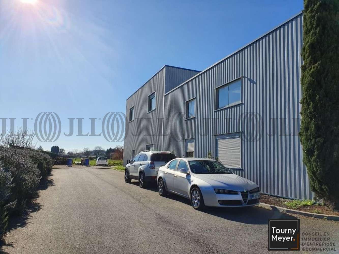 Activités/entrepôt Aucamville, 31140