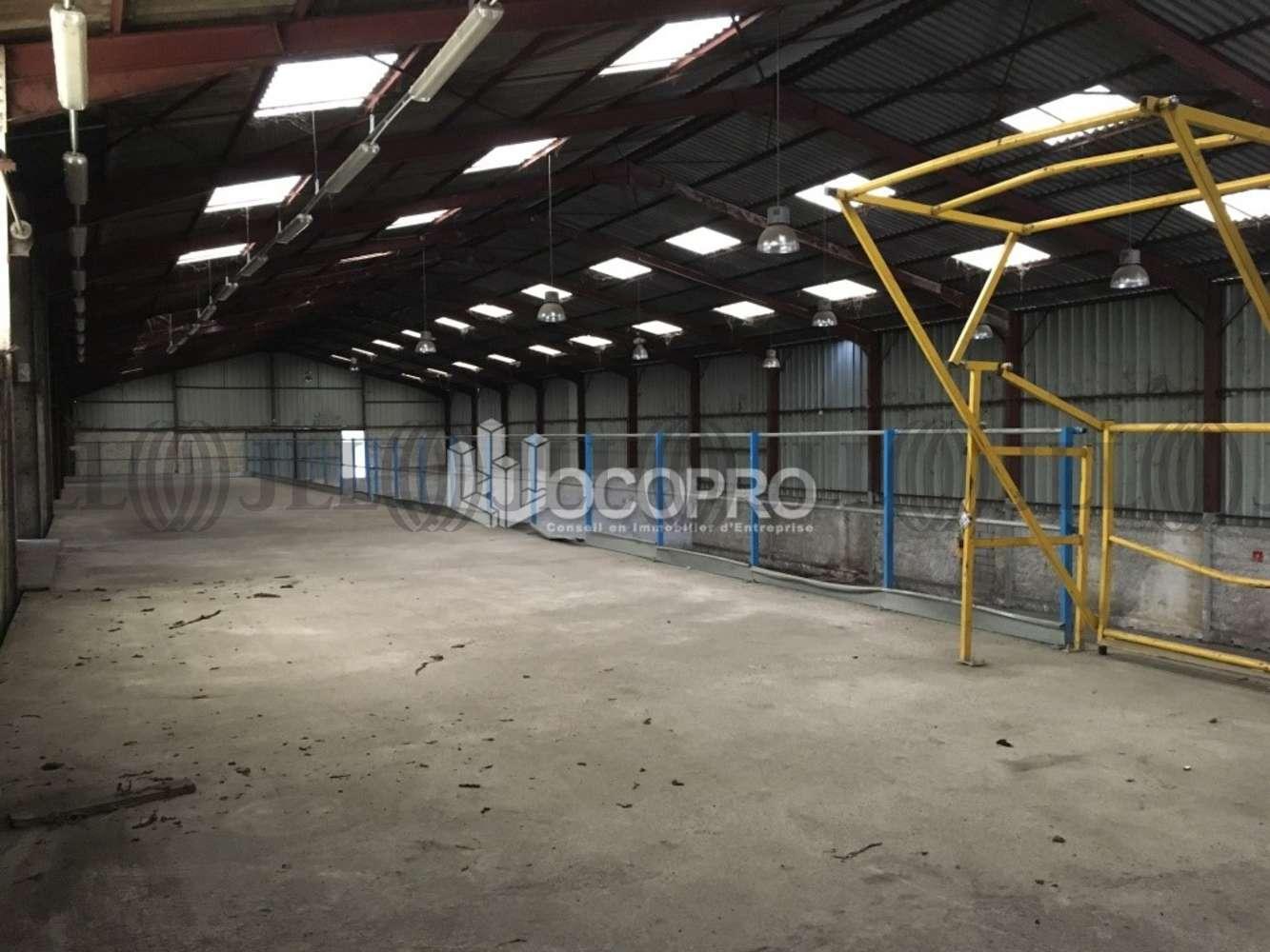 Activités/entrepôt Mandelieu la napoule, 06210 - MANDELIEU-LA-NAPOULE - 10939442