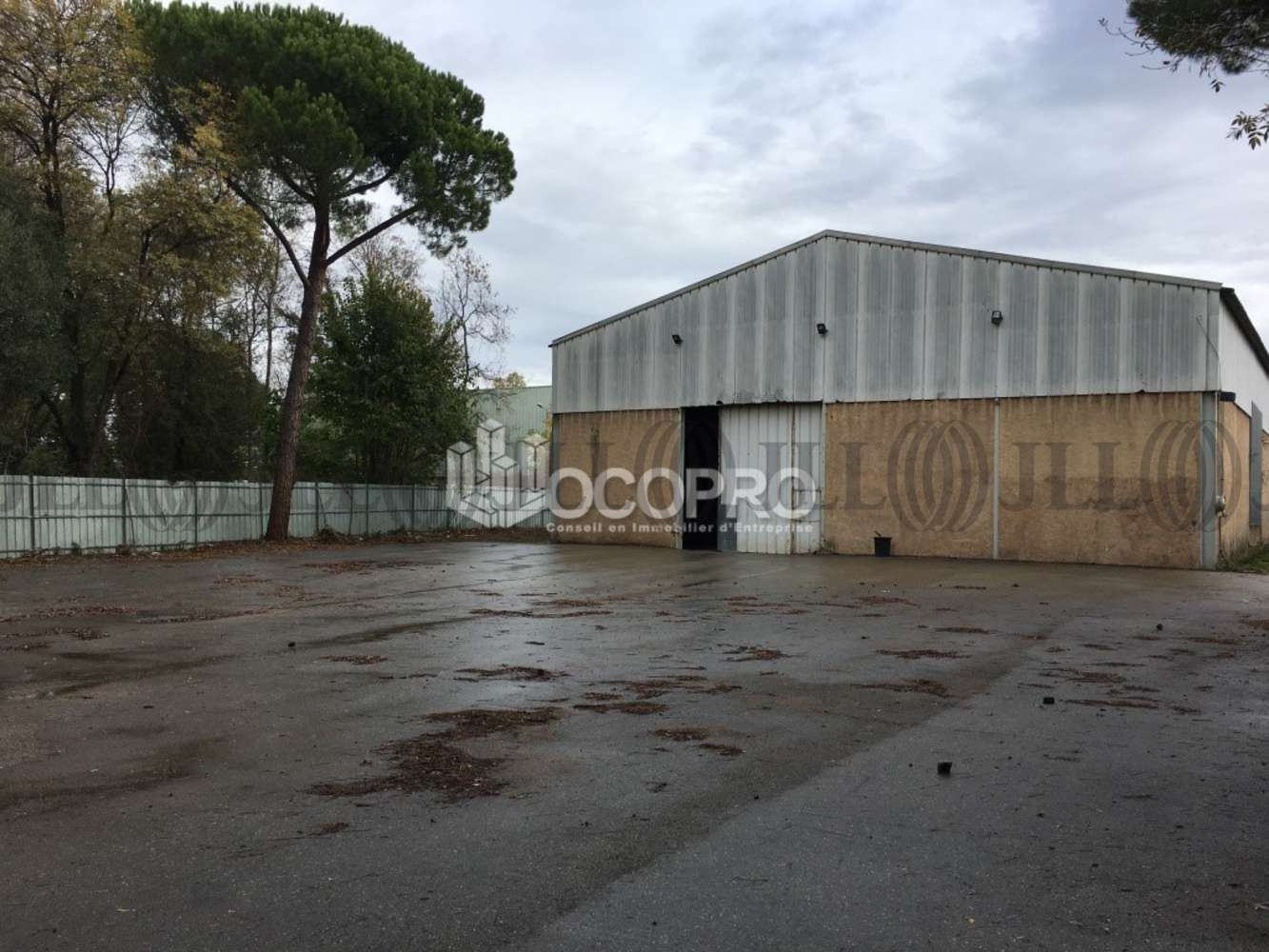 Activités/entrepôt Mandelieu la napoule, 06210 - MANDELIEU-LA-NAPOULE - 10939527