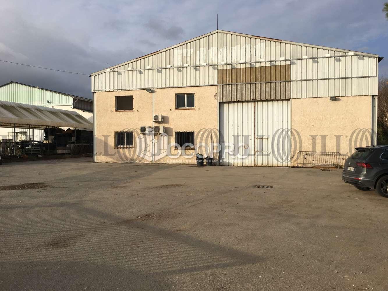 Activités/entrepôt Mandelieu la napoule, 06210 - MANDELIEU-LA-NAPOULE - 10939529