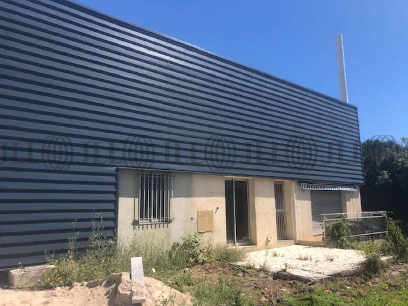 Activités/entrepôt St jean de vedas, 34430 - 27 RUE CLEMENT ADER - 10942097