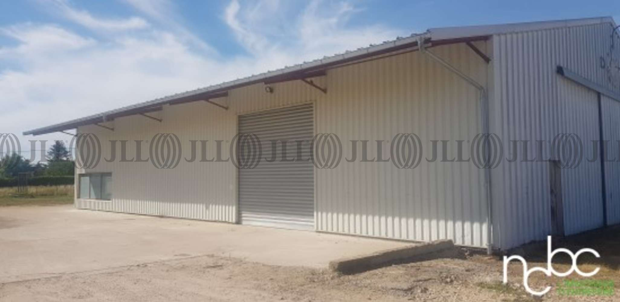 Activités/entrepôt Chatenoy en bresse, 71380