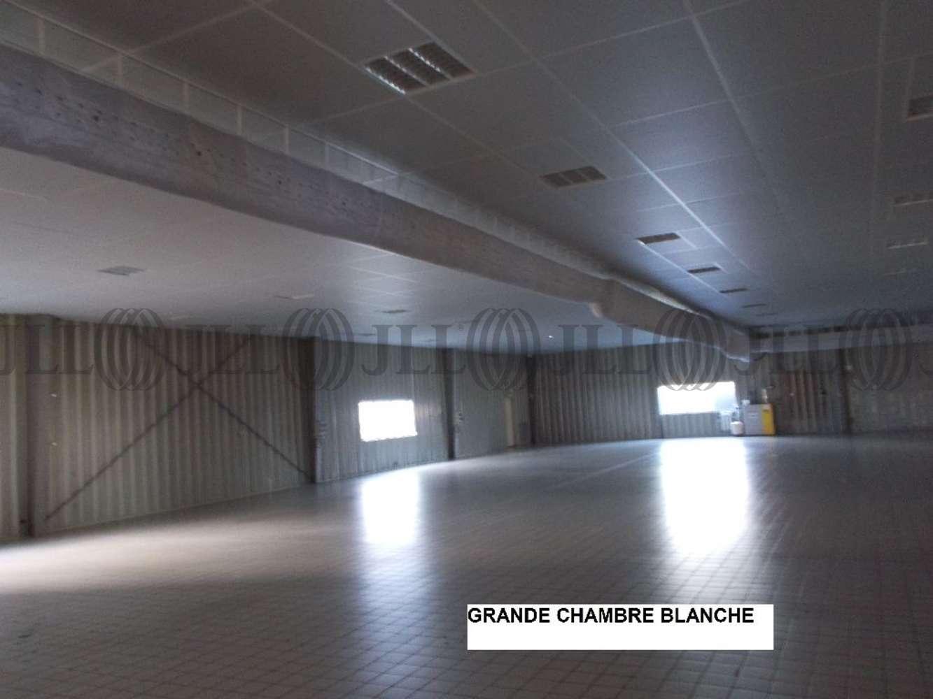 Activités/entrepôt Reyrieux, 01600 - Local d'activité mixte récent - Ain (01) - 9467713