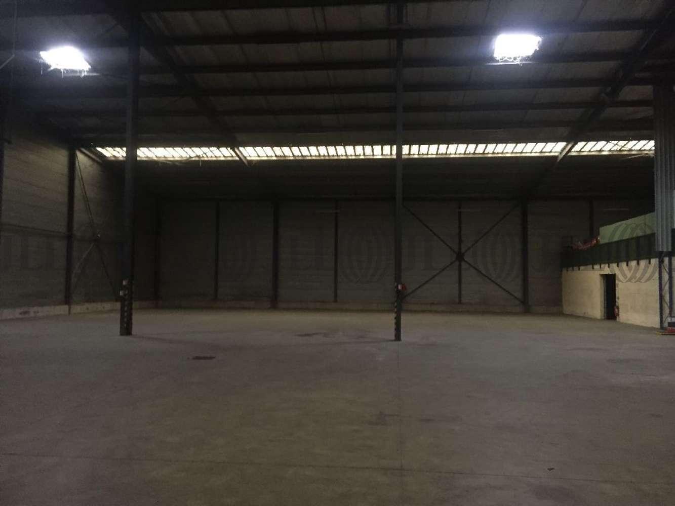 Activités/entrepôt Neuville sur saone, 69250 - Entrepot à vendre Lyon Nord - Neuville - 9493083