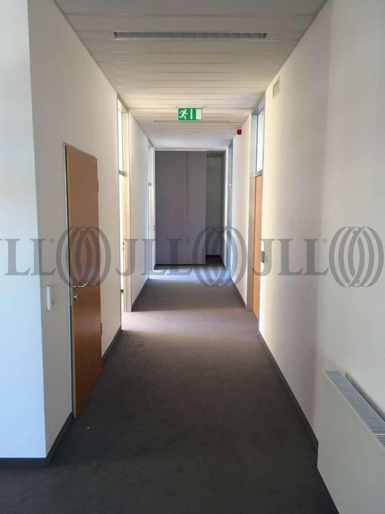 Büros Heidelberg, 69123 - Büro - Heidelberg, Wieblingen - F1769 - 9519380