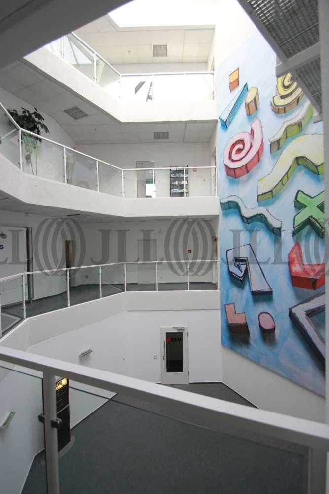 Büros Raunheim, 65479 - Büro - Raunheim - F0227 - 9785098