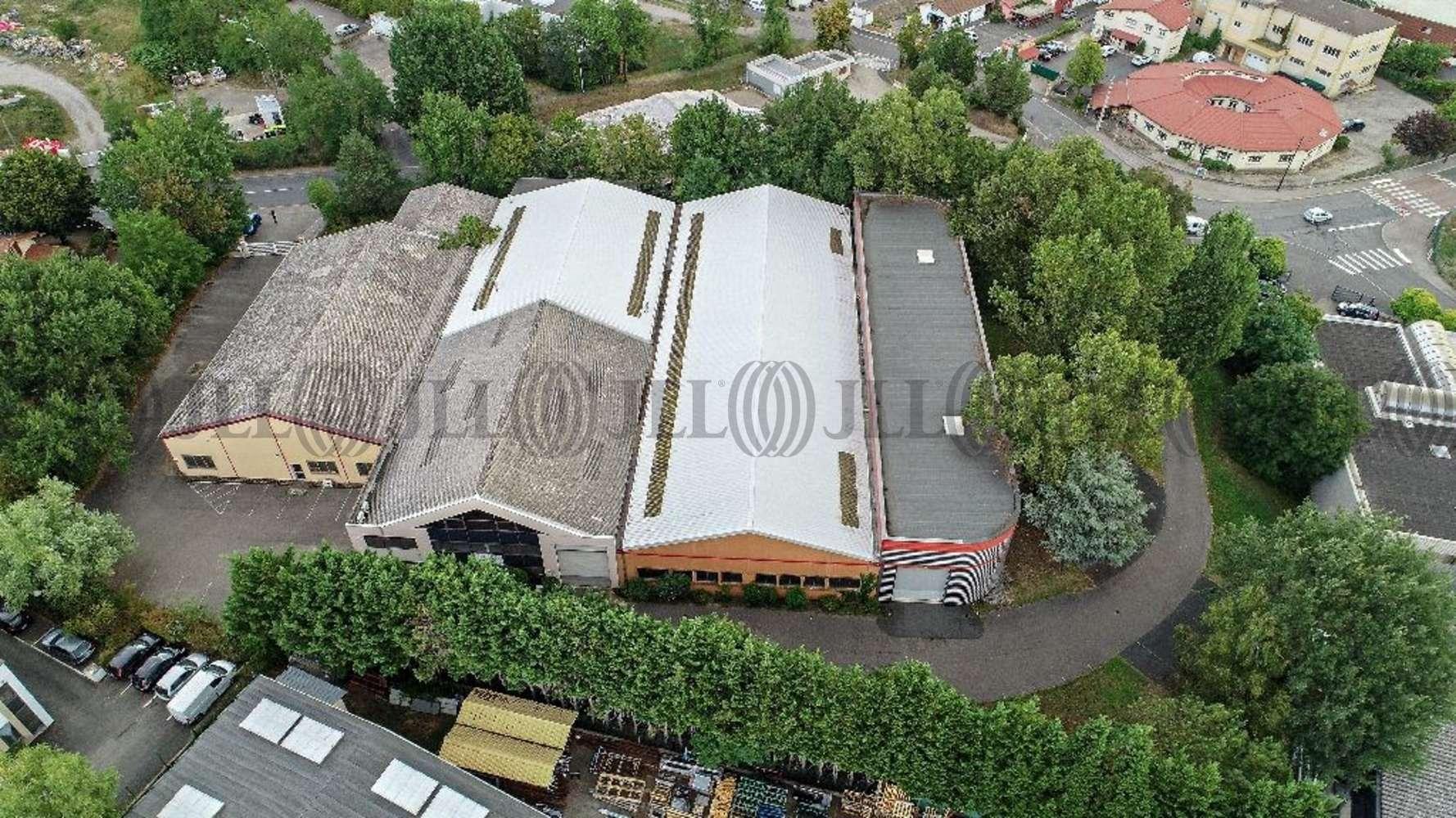 Activités/entrepôt Champagne au mont d or, 69410 - Entrepot à vendre Lyon TECHLID - Négoce - 10025225