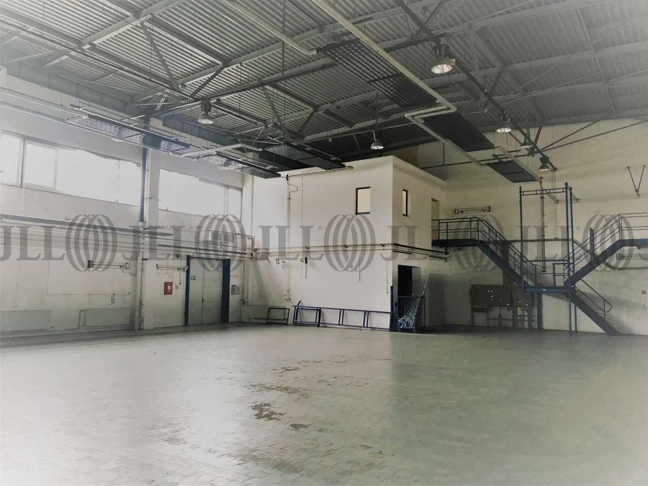 Hallen Oberlungwitz, 09353 - Halle - Oberlungwitz - B1695 - 10044806
