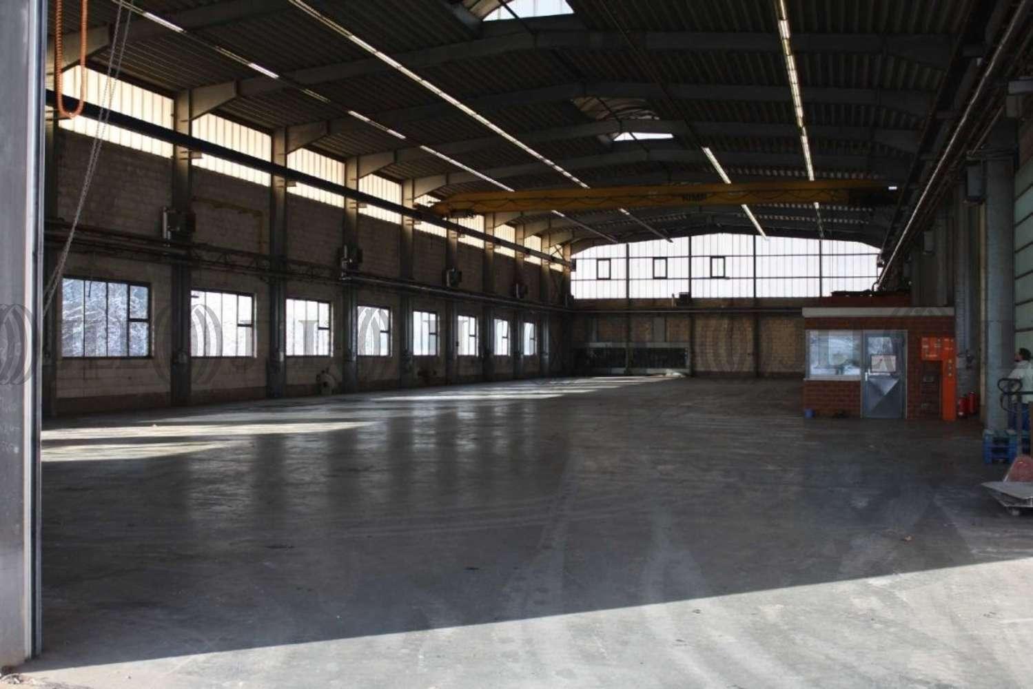 Hallen Hainichen, 09661 - Halle - Hainichen - B0948 - 10170235