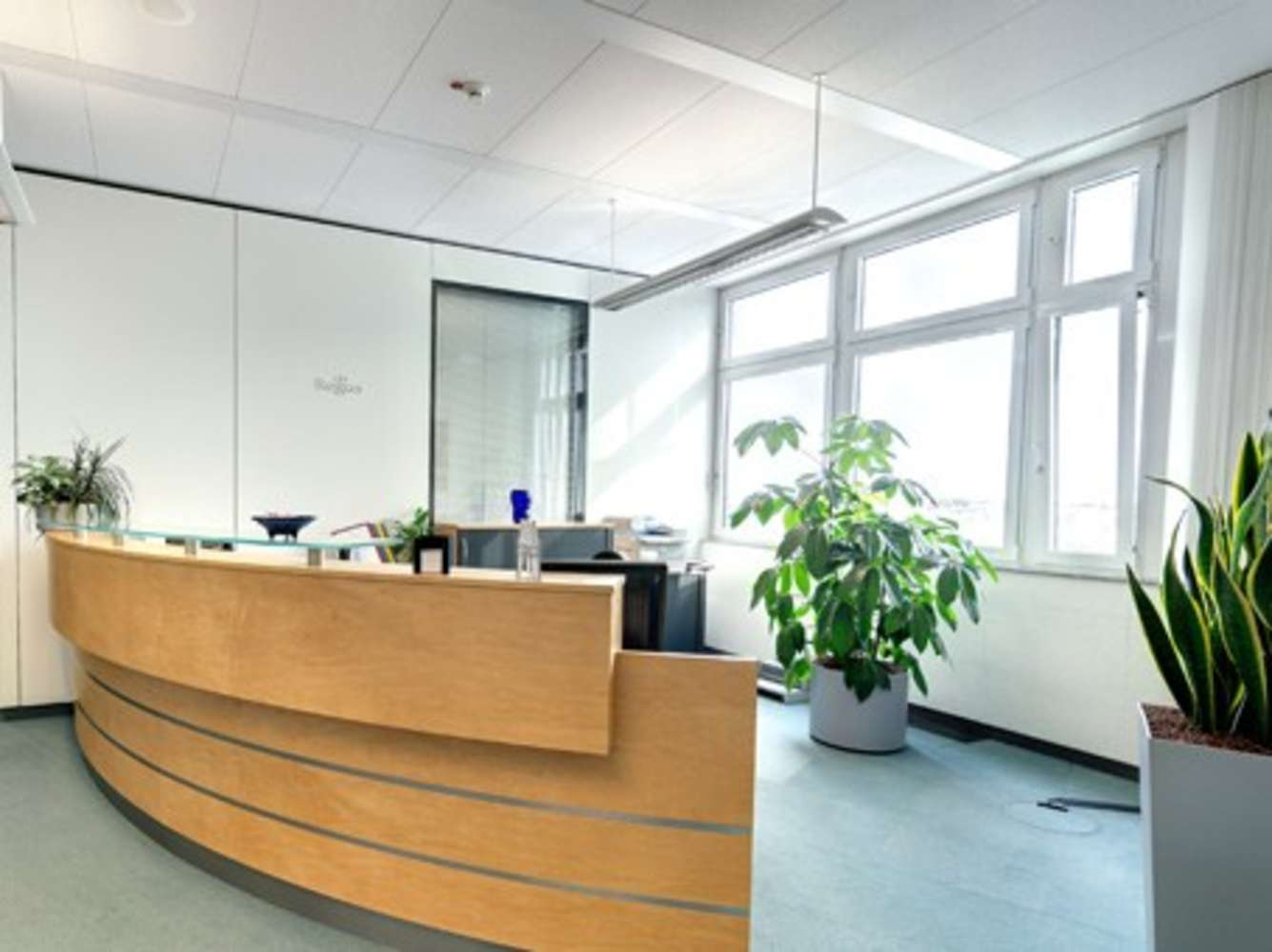 Büros Heidelberg, 69190 - Büro auf Zeit - Heidelberg - C0079 - 1346750
