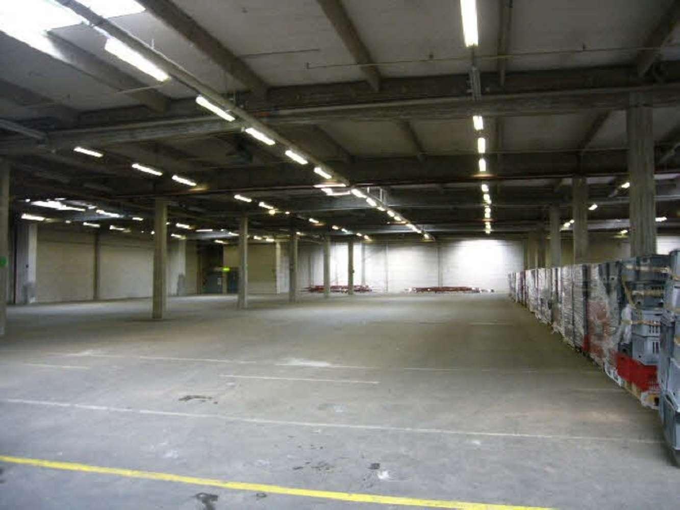 Hallen Düsseldorf, 40229 - Halle - Düsseldorf, Eller - D0221 - 9389729