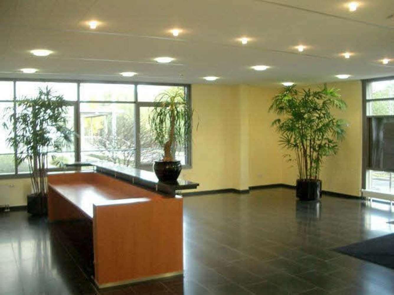 Büros Frankfurt am main, 60439 - Büro - Frankfurt am Main, Heddernheim - F1275 - 9390239