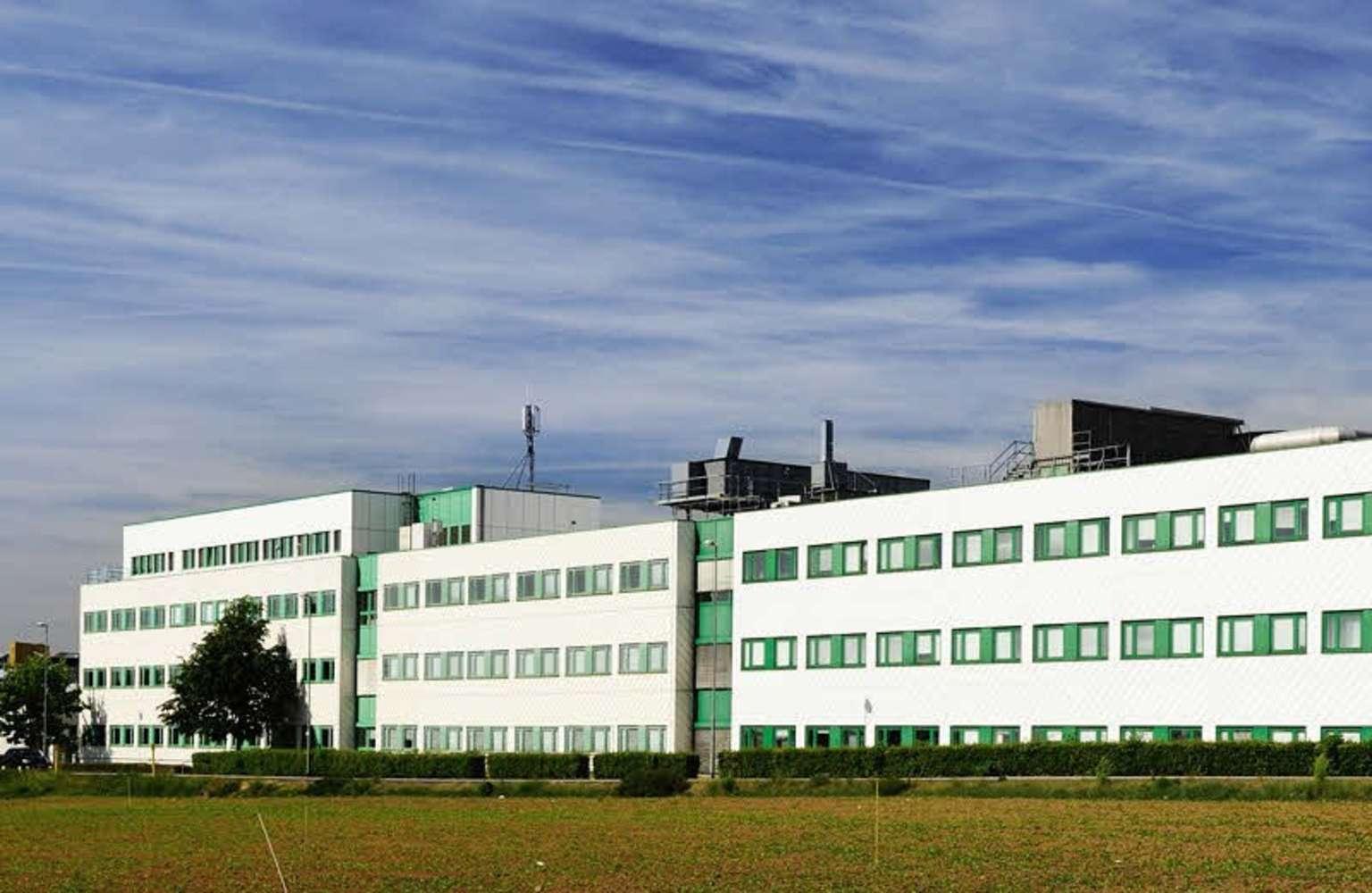 Büros Butzbach, 35510 - Büro - Butzbach - F1723 - 9406505
