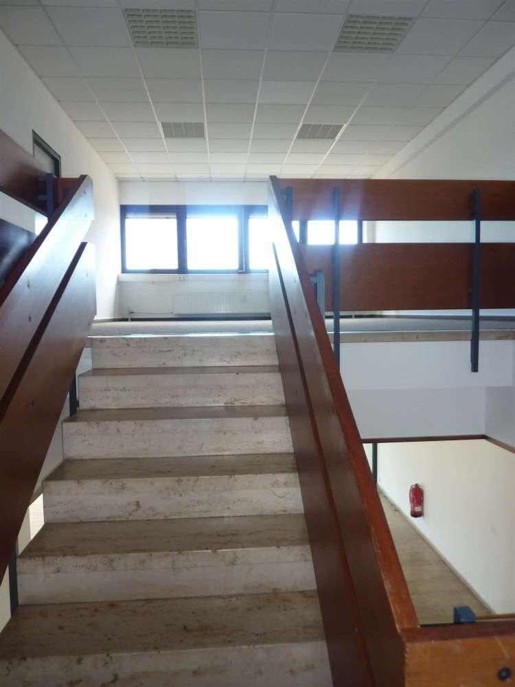 Büros Hockenheim, 68766 - Büro - Hockenheim - F1814 - 9407253