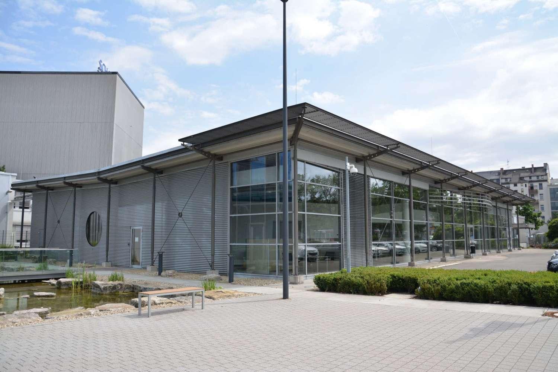 Büros Mainz, 55122 - Büro - Mainz, Neustadt - F2127 - 9407797