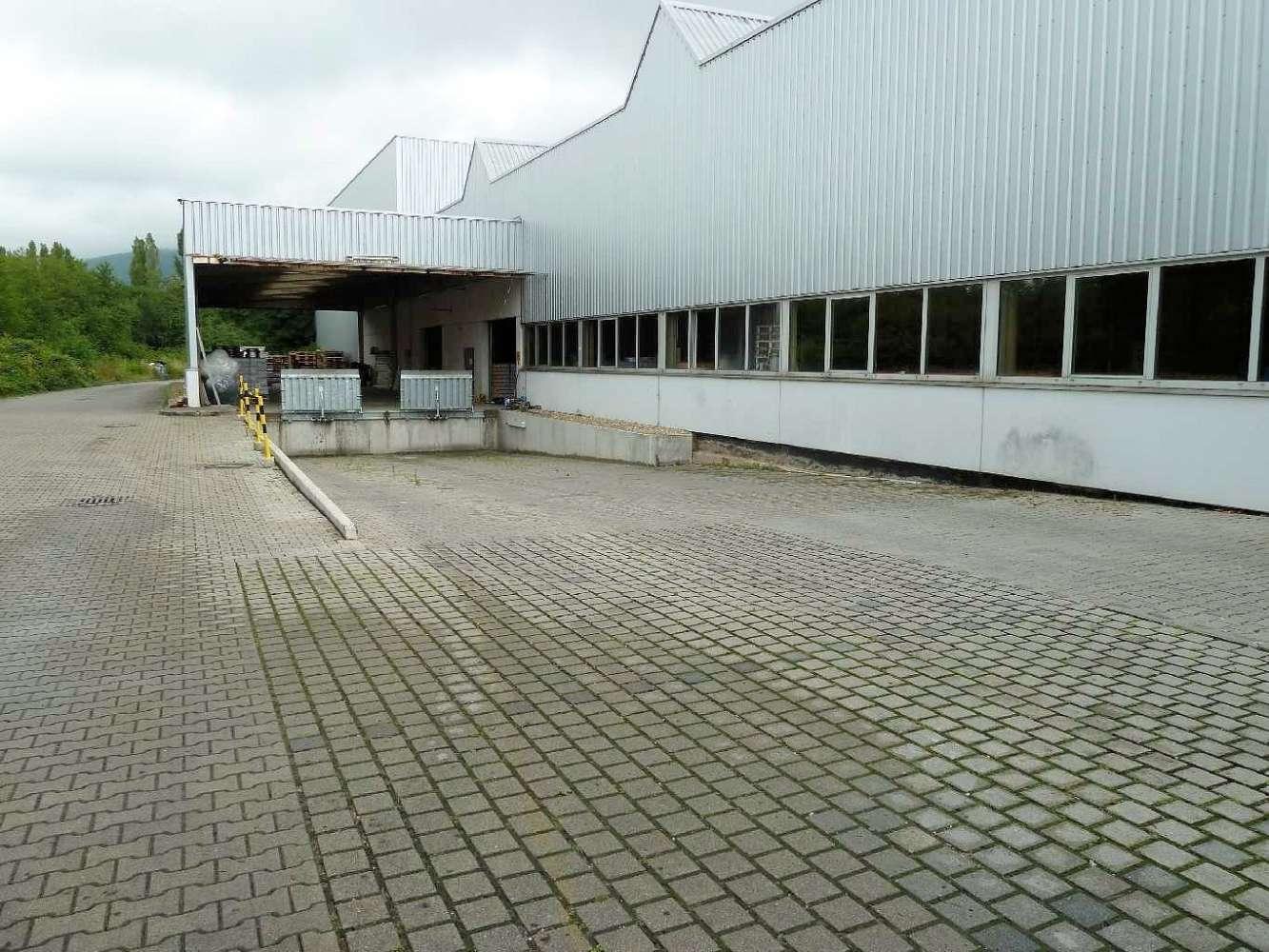 Hallen Leimen, 69181 - Halle - Leimen - F0892 - 9409031