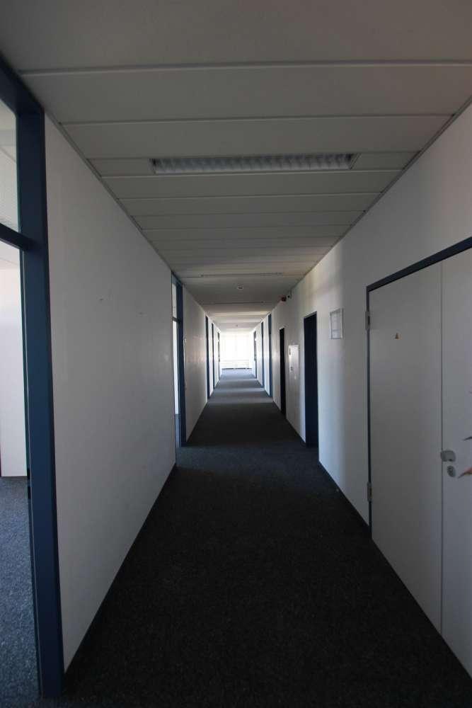 Büros Dreieich, 63303 - Büro - Dreieich, Sprendlingen - F1124 - 9414369