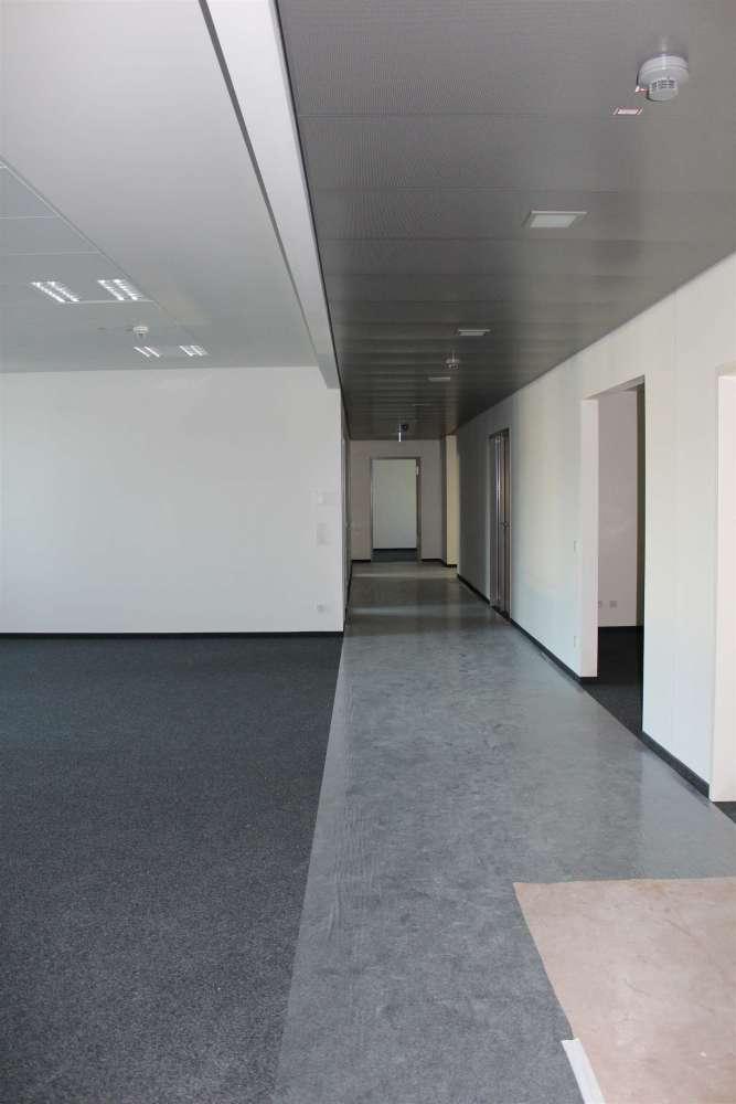 Büros Mannheim, 68165 - Büro - Mannheim, Oststadt - F1758 - 9416800