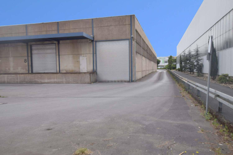 Hallen Hilden, 40721 - Halle - Hilden - D2112 - 9419144