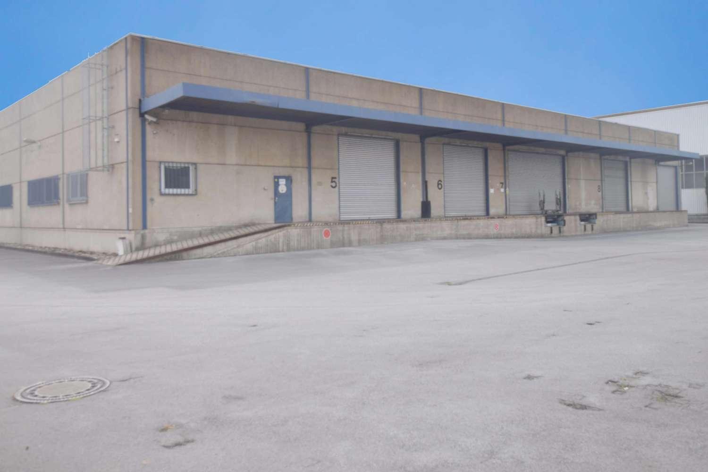 Hallen Hilden, 40721 - Halle - Hilden - D2112 - 9419146