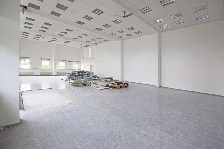 Büros Essen, 45133 - Büro - Essen, Rüttenscheid - D2162 - 9420657