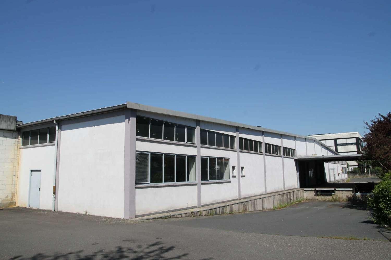 Hallen Maintal, 63477 - Halle - Maintal, Dörnigheim - F0877 - 9422173