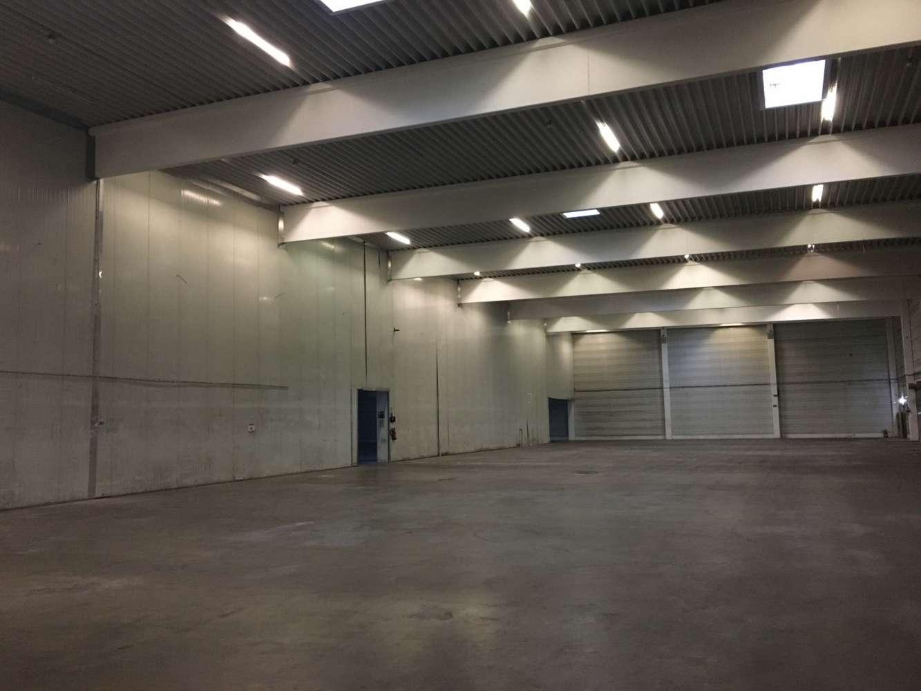 Hallen Dessau-roßlau, 06849 - Halle - Dessau-Roßlau - B1299 - 9424494