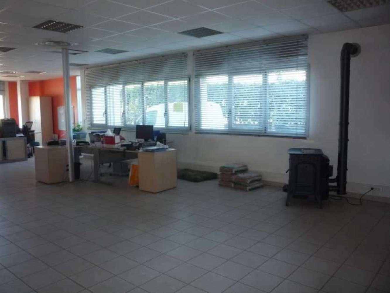 Activités/entrepôt Bailly romainvilliers, 77700 - ZAC DE BAILLY ROMAINVILLIERS - 9462051