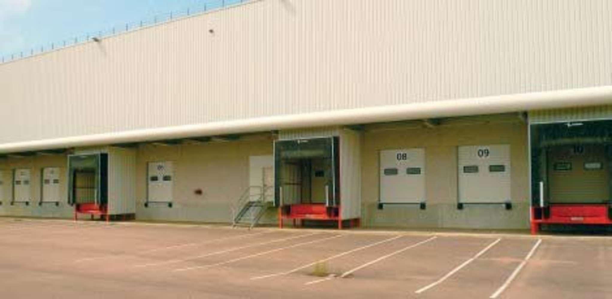 Plateformes logistiques Savigny sur clairis, 89150 - SAVIGNY I - 9453427
