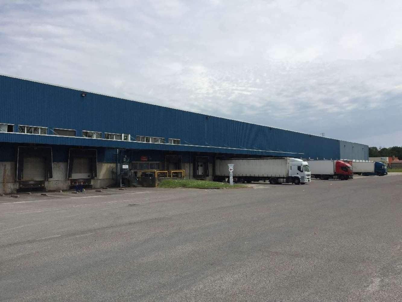 Plateformes logistiques Laiz, 01290 - Entrepôt logistique à louer - Ain (01) - 9461740