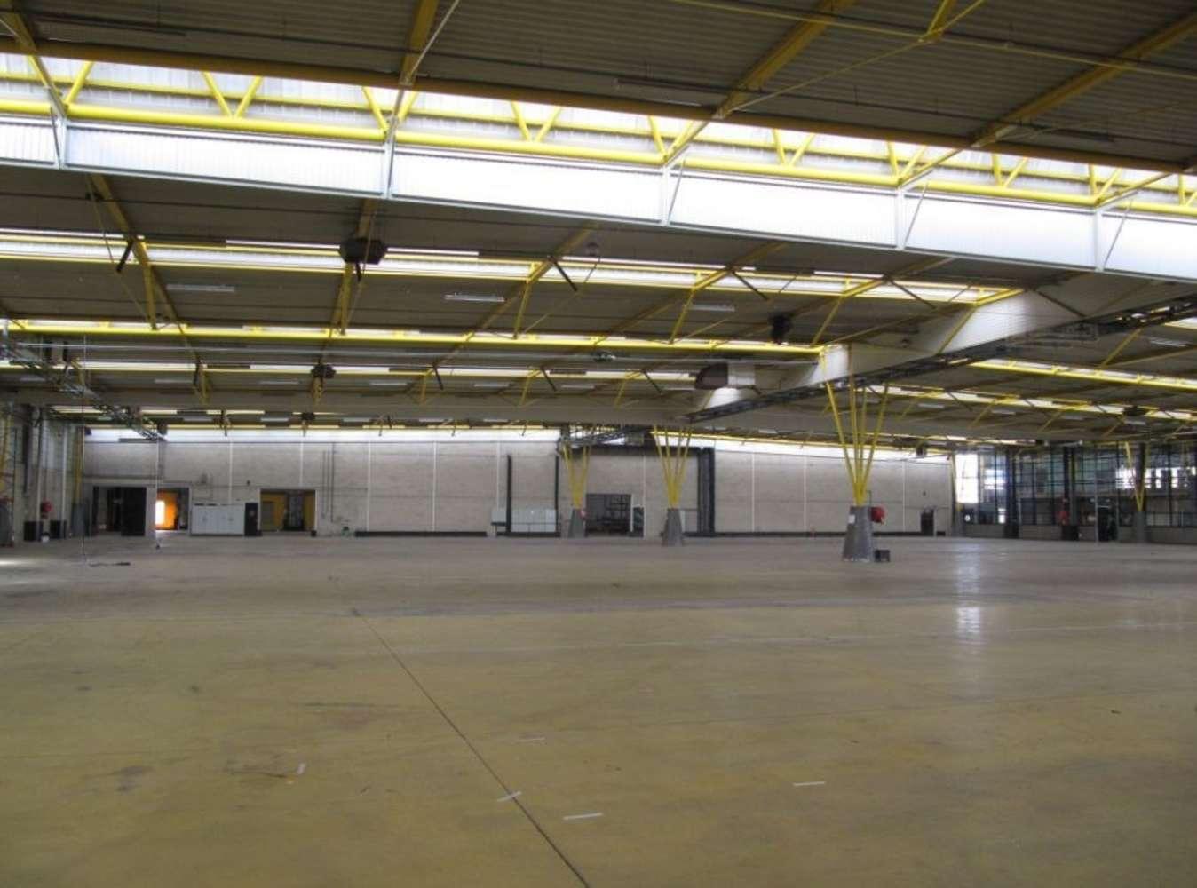 Activités/entrepôt Roissy en france, 95700 - 4 RUE DE LA PRESSE - 9449798