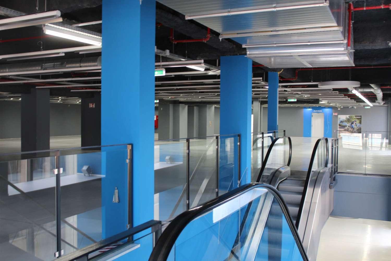 Büros Mannheim, 68161 - Büro - Mannheim, Quadrate - F2265 - 9487575
