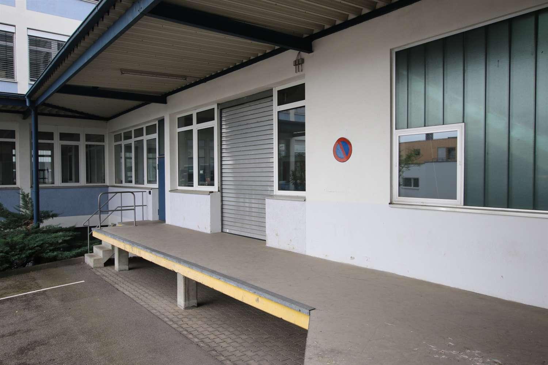 Büros Leonberg, 71229 - Büro - Leonberg, Eltingen - S0528 - 9510939
