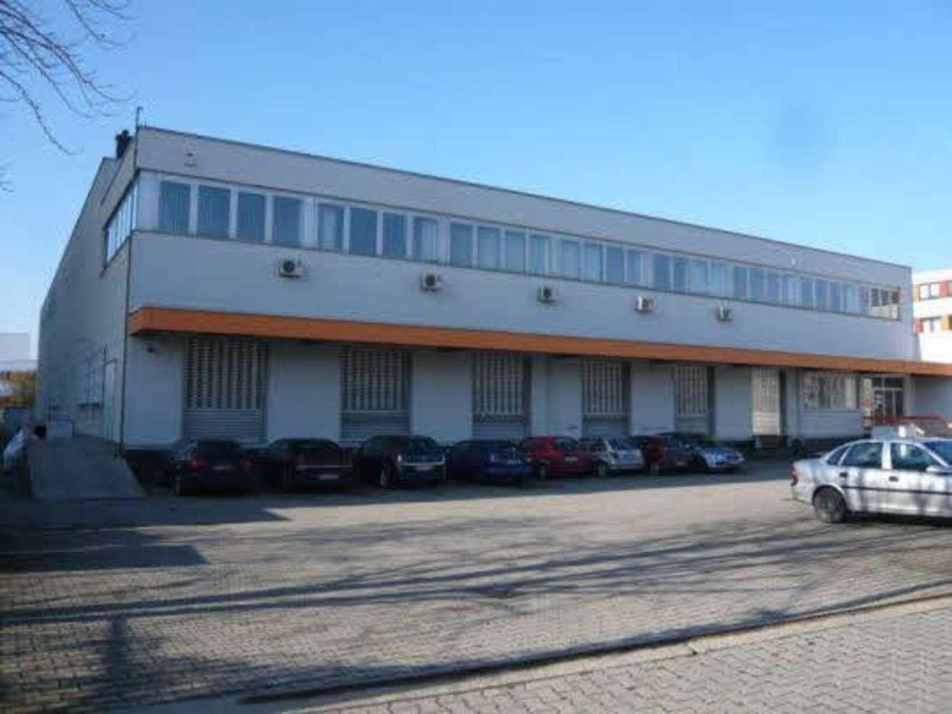 Hallen Kriftel, 65830 - Halle - Kriftel - F2310 - 9517973