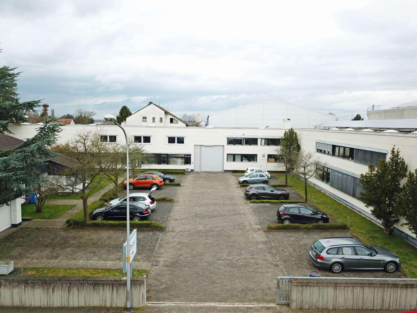 Hallen Griesheim, 64347 - Halle - Griesheim - F2409 - 9536159
