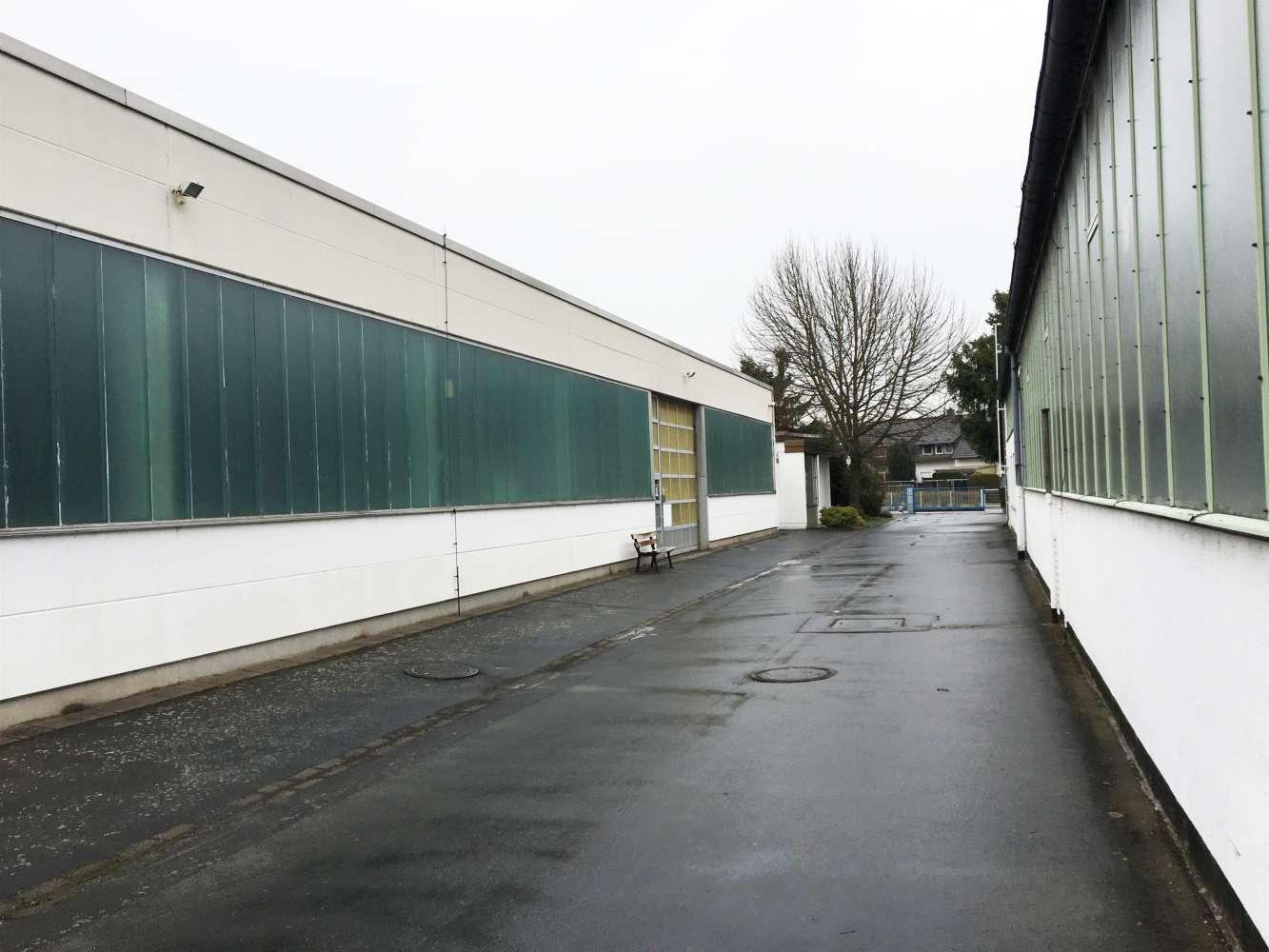 Hallen Seligenstadt, 63500 - Halle - Seligenstadt - F2416 - 9537741