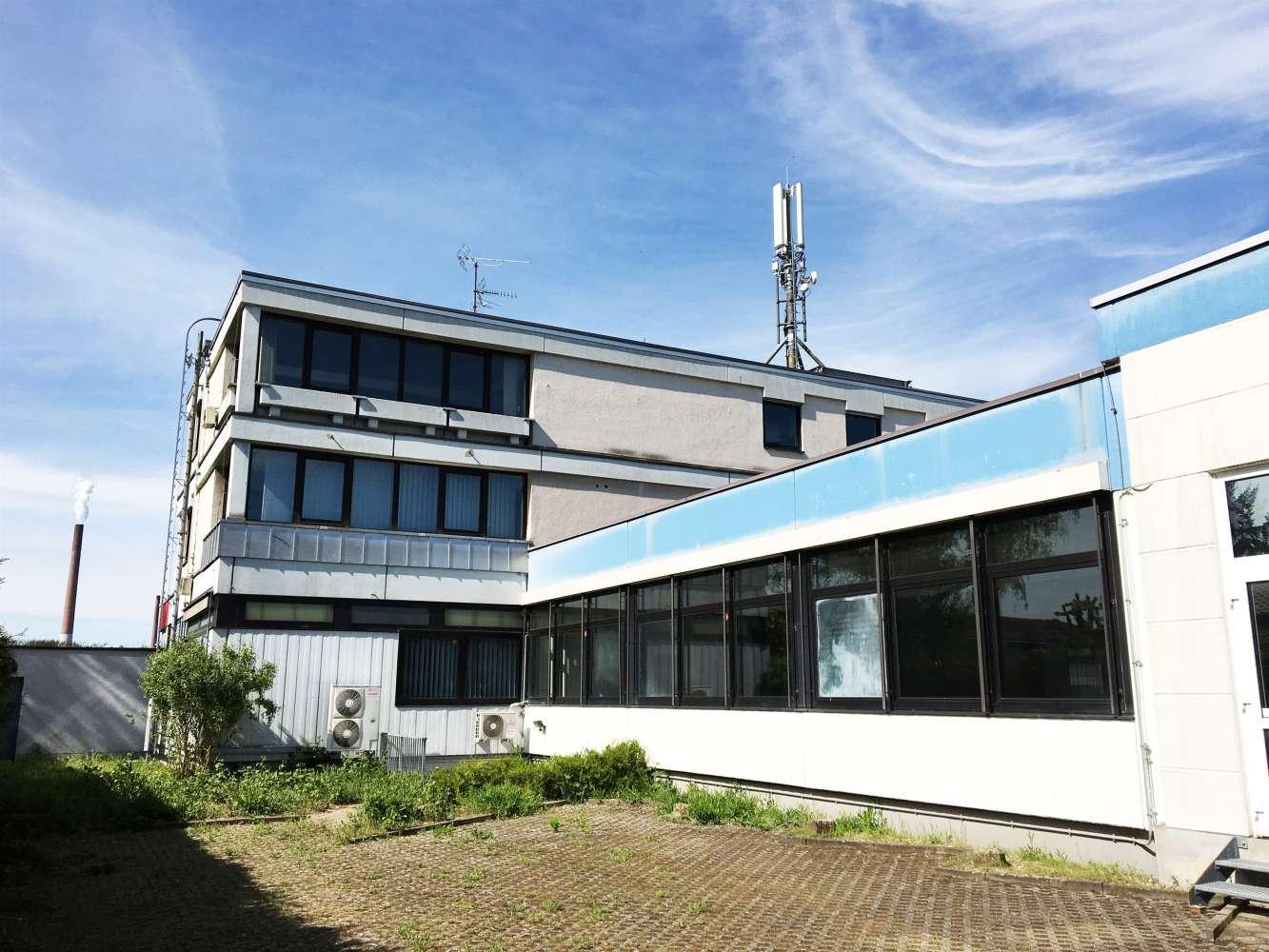 Hallen Stockstadt, 63811 - Halle - Stockstadt - F2421 - 9543634