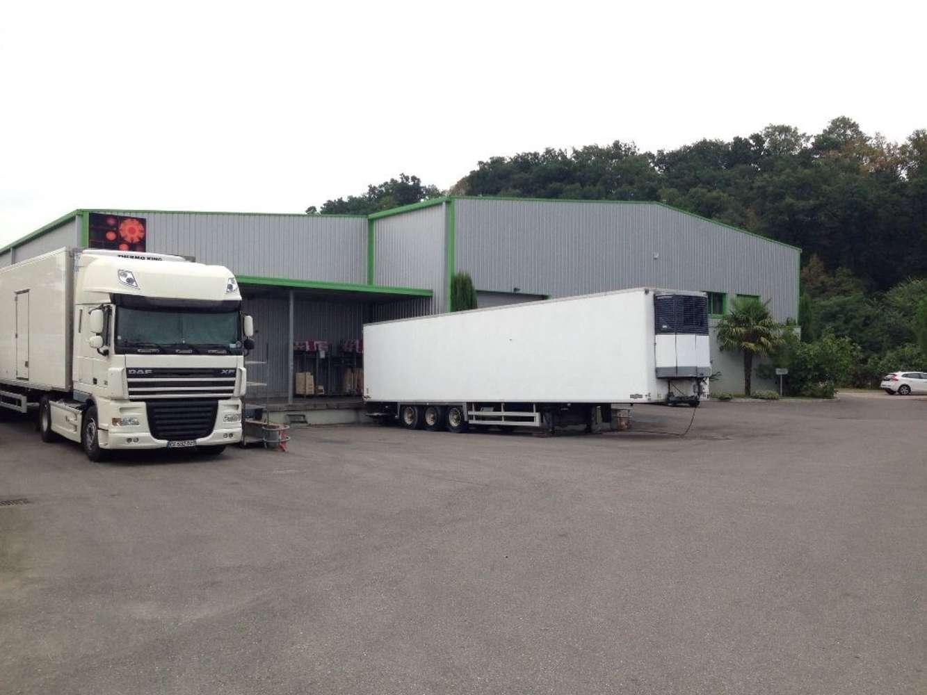 Activités/entrepôt Marcilly d azergues, 69380 - Location entrepot Lyon Nord - Négoce - 9570842